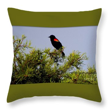 Throw Pillow featuring the photograph Black Bird by Janice Spivey