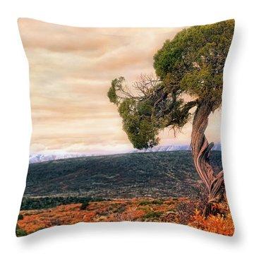 Black Canyon Juniper - Colorado - Autumn Throw Pillow by Jason Politte