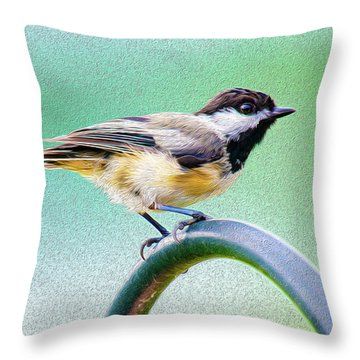 Throw Pillow featuring the mixed media Black-capped Chickadee Oil by Onyonet  Photo Studios