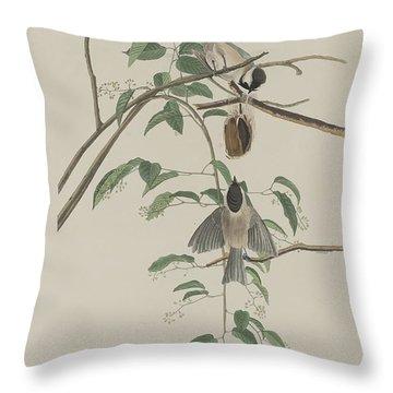Black-capped Titmouse Throw Pillow