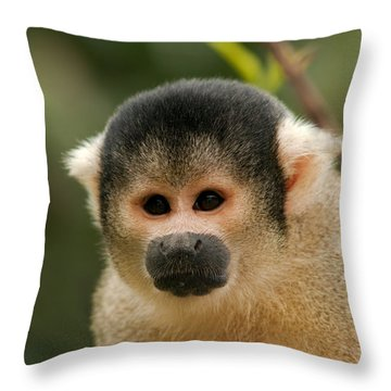Black-capped Yellow Squirrel Monkey Portrait Throw Pillow by Aivar Mikko