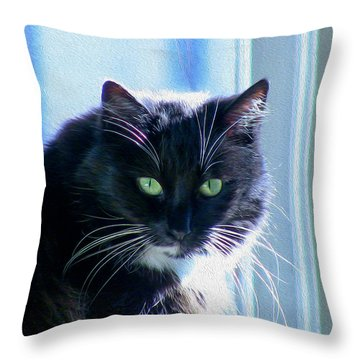 Black Cat In Sun Throw Pillow