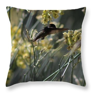 Black Chinned Hummingbird In Garden Throw Pillow by Colleen Cornelius