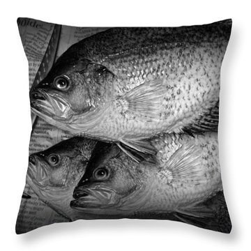 Black Crappie Panfish With Fish Filet Knife In Black And White Throw Pillow