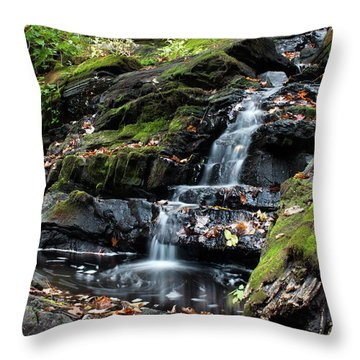 Black Creek Falls In Autumn, 2016 Throw Pillow by Jeff Severson