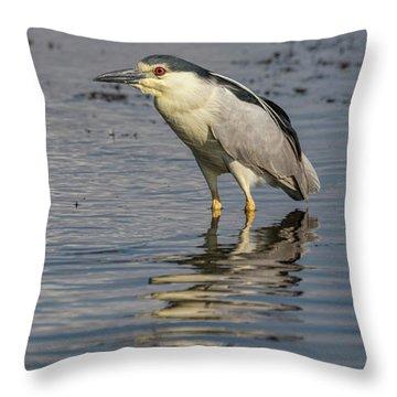 Black-crowned Night Heron 2017-3 Throw Pillow
