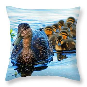 Black Duck Brood Throw Pillow