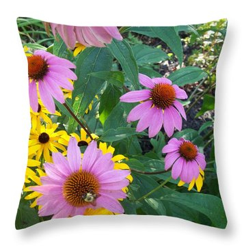 Black Eye Susans And Echinacea Throw Pillow