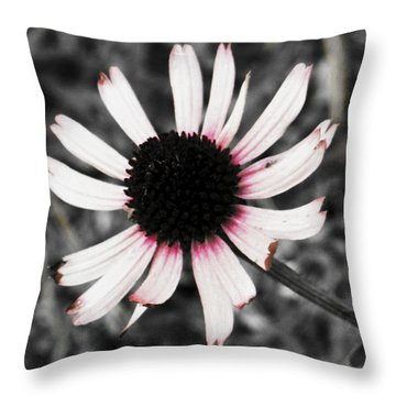 Throw Pillow featuring the photograph Black Eyed by Deborah  Crew-Johnson