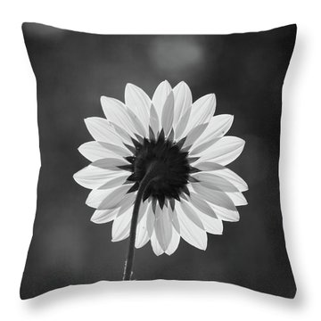 Black-eyed Susan - Black And White Throw Pillow