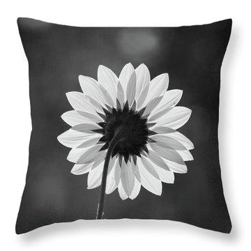 Black-eyed Susan - Black And White Throw Pillow