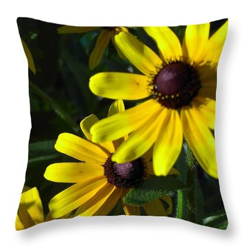 Black Eyed Susan Throw Pillow by Mary-Lee Sanders