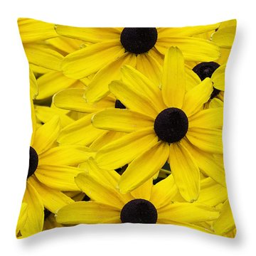 Black-eyed Susans 02 Throw Pillow