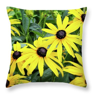 Black Eyed Susans- Fine Art Photograph By Linda Woods Throw Pillow