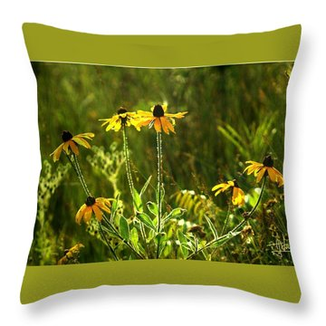 Throw Pillow featuring the photograph Black Eyed Susans In The Wild by Jim Vance