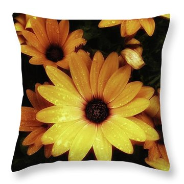 Throw Pillow featuring the photograph Black Eyed Susans. Looks Like They're by Mr Photojimsf