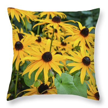 Black-eyed-susans Throw Pillow