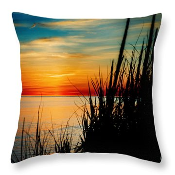 Black Grass Throw Pillow by Randall  Cogle