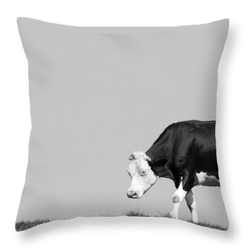Black Hereford Throw Pillow