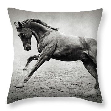 Black Horse In Dust Throw Pillow