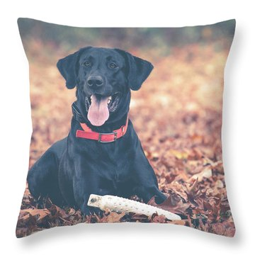 Black Labrador In The Fall Leaves Throw Pillow