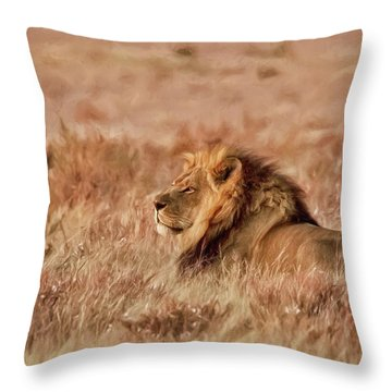 Black-maned Lion Of The Kalahari Waiting Throw Pillow