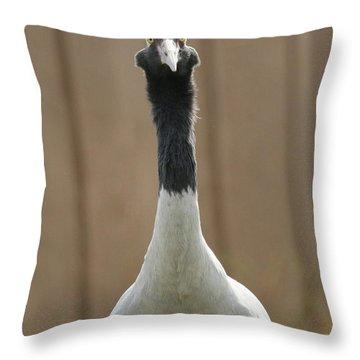 Black Necked Crane   Grus Nigricollis Throw Pillow