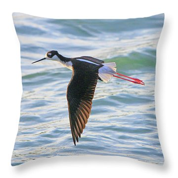 Black-necked Stilt 8 Throw Pillow