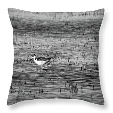 Black-necked Stilt Monochrome  Throw Pillow
