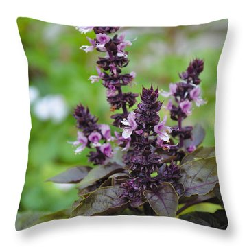 Black Opal Basil Flower Throw Pillow