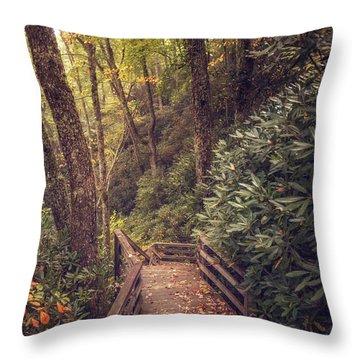 Black Rock Mountain Throw Pillow