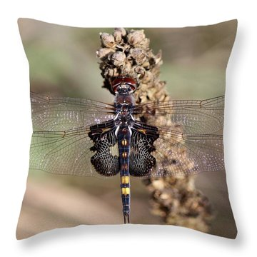 Black Saddlebags Throw Pillow