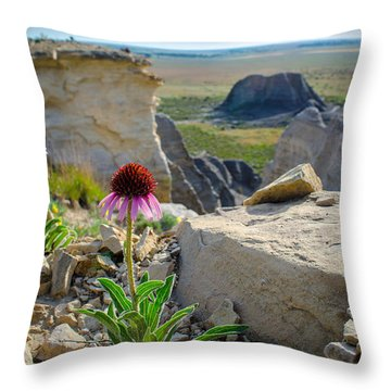 Black Sampson In The Badlands Throw Pillow