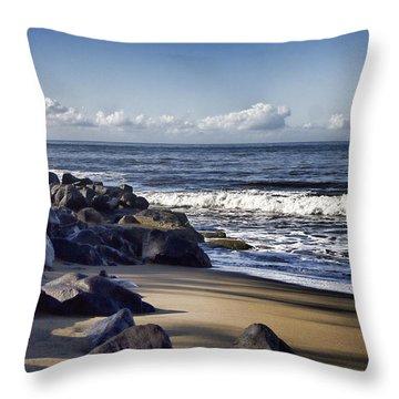Black Sand Beach  Throw Pillow by Douglas Barnard