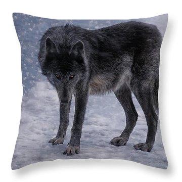 Black She-wolf Throw Pillow