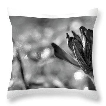 Black Silla Throw Pillow