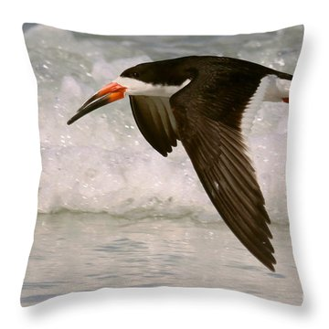 Black Skimmer Flight Throw Pillow