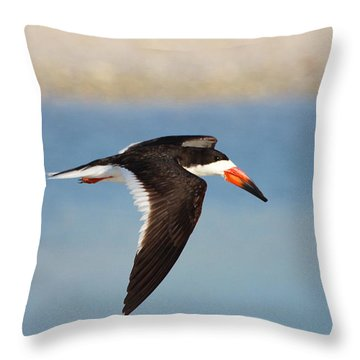 Black Skimmer In Flight Throw Pillow by Barbara Bowen