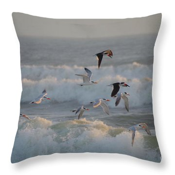 Black Skimmers And Gulls Throw Pillow