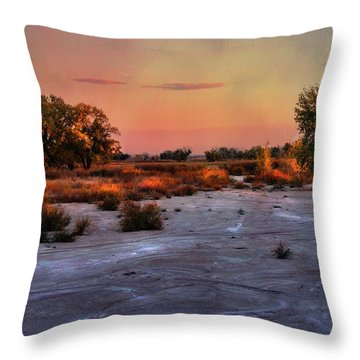 Throw Pillow featuring the photograph Black Squirrel Creek Fall Scape by Ellen Heaverlo