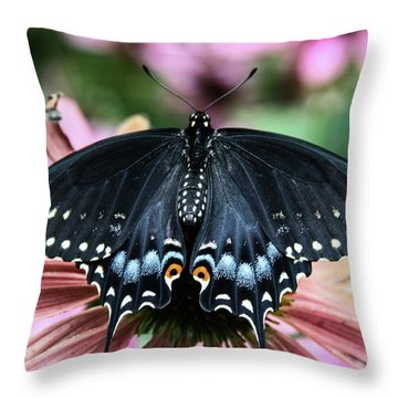 Black Swallowtail 3 Throw Pillow