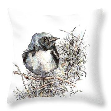 Black-throated Blue Warbler Throw Pillow