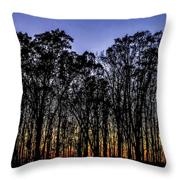 Throw Pillow featuring the photograph Black Trees by Onyonet  Photo Studios