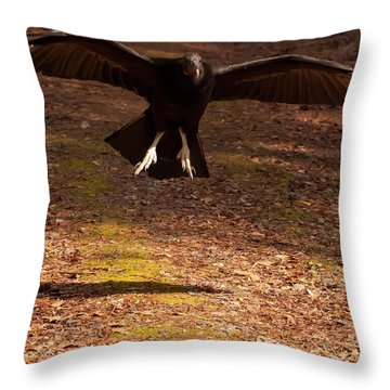 Black Vulture Landing Throw Pillow by Chris Flees