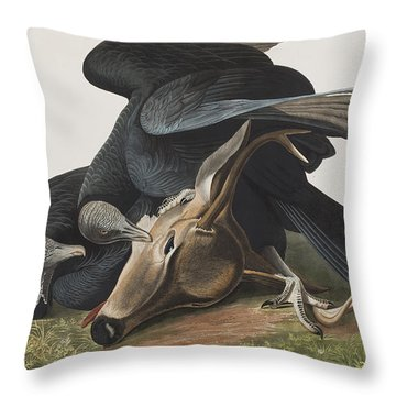 Black Vulture Or Carrion Crow Throw Pillow