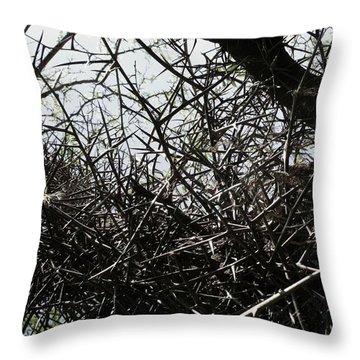 Black Walnut Spikes II Throw Pillow by Anna Villarreal Garbis
