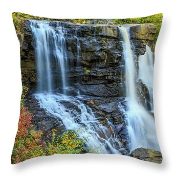 Black Water Falls #3 Throw Pillow
