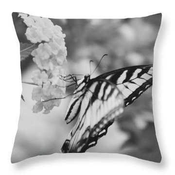 Black/white Butterfly Throw Pillow