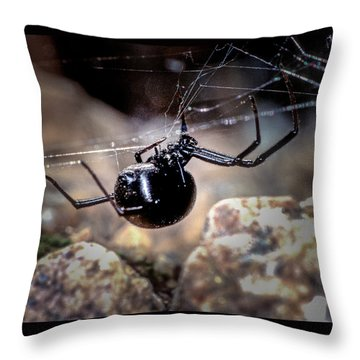 Black Widow Spider Throw Pillow
