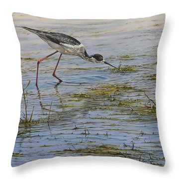 Throw Pillow featuring the painting Black Winged Stilt by Alan M Hunt